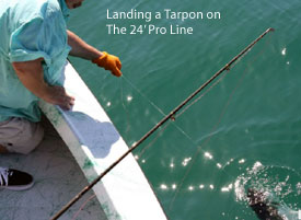Landing a Tarpon on the 24' Pro Line